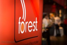 TFD17_ForestBanner_520